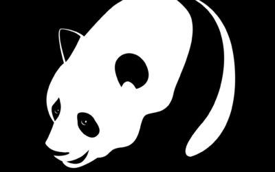 British Columbia and Philippines Issues to Further Grow the Panda Bond Market
