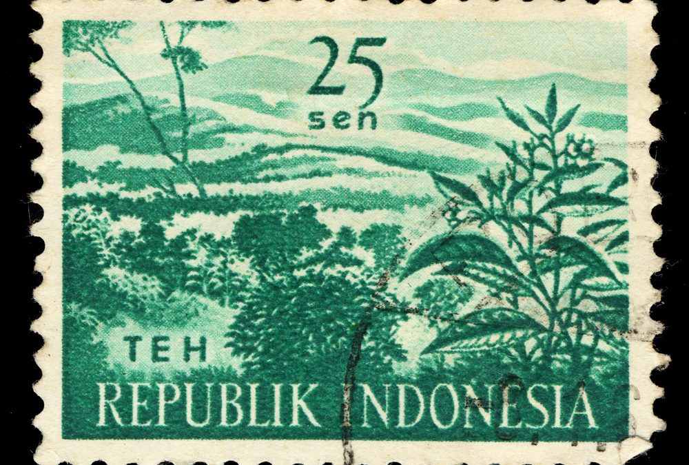 Indonesia Achieves Milestone with the First Asian Sovereign Green Bond Issue