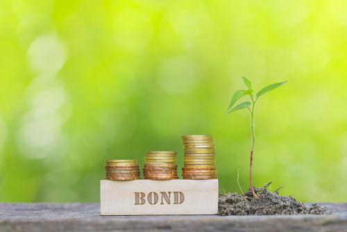 Greenko Raises $940mn via 5NC2 Amortizer; Sets Record for Largest Indian Green Dollar Bond